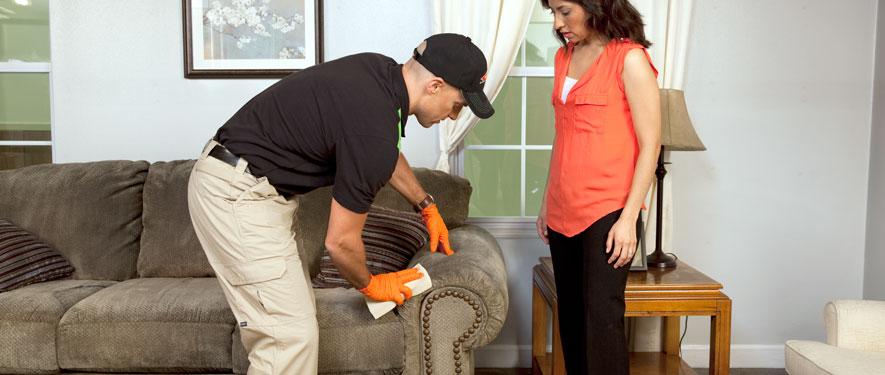 Homosassa Springs, FL carpet upholstery cleaning