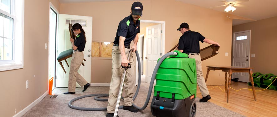 Homosassa Springs, FL cleaning services